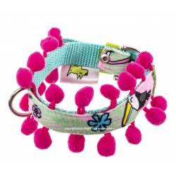 Toucan Collar - Pink